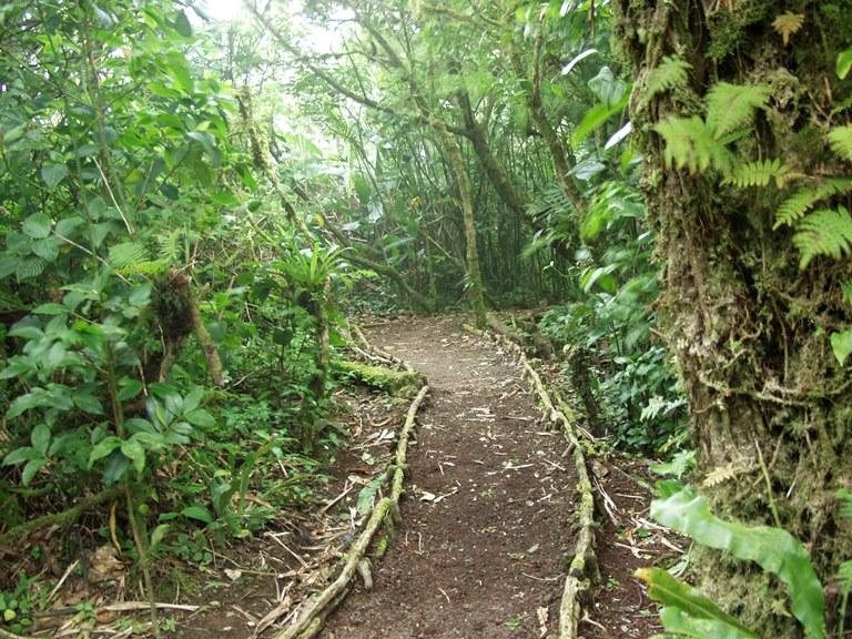 Reserva Natural Volcan Mombacho