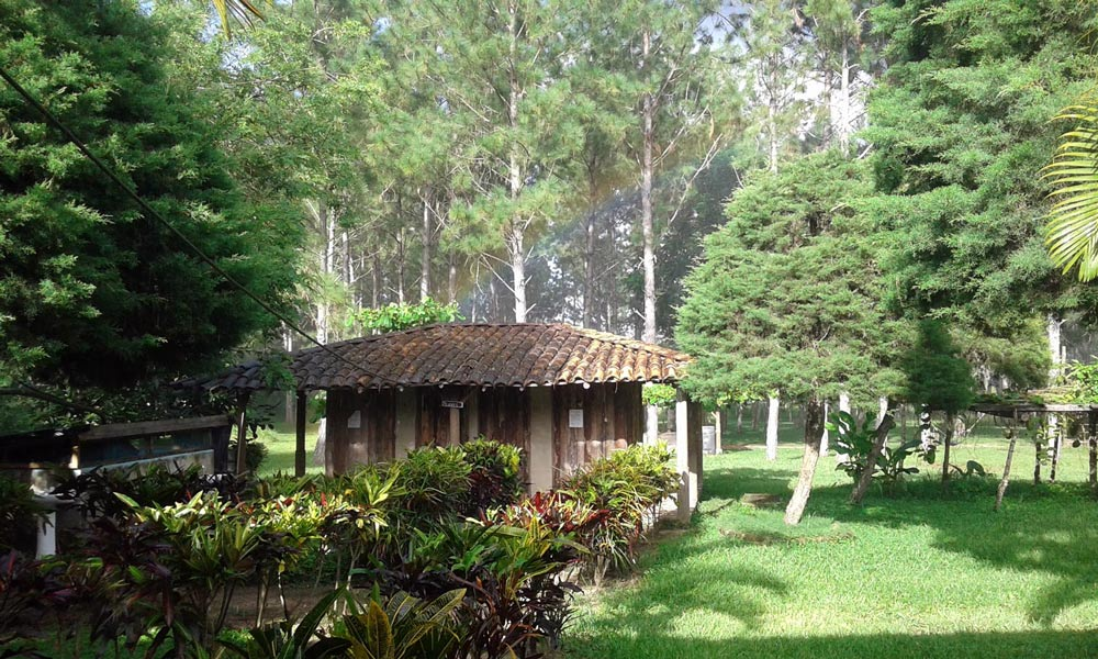 Finca-San-Nicolás-Nicargua