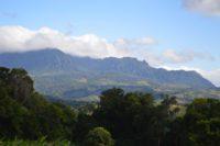 Reserva Bosawas