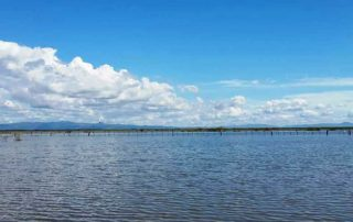 Laguna- Tisma - Nicaragua