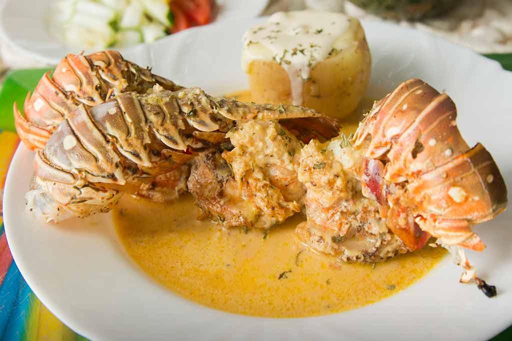 costa-caribe-lagosta