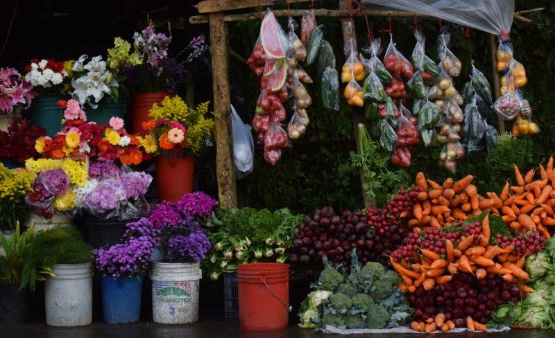 verduras-flores-Jinotega