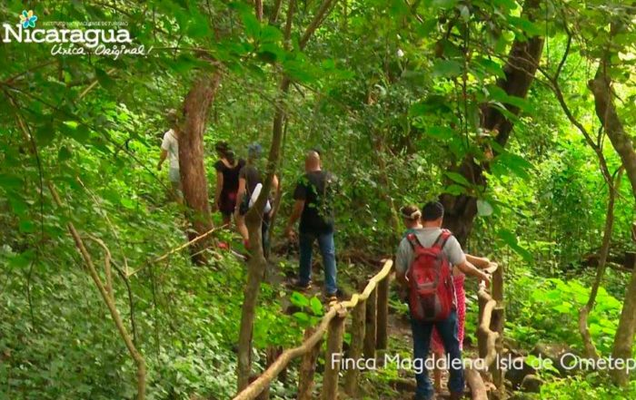 Finca-Magdalena,-Isla-de-Ometepe