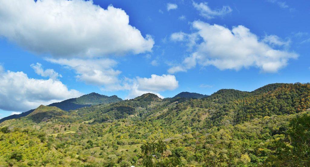 Reserva-Natural-Tepesomoto-La-Patasta