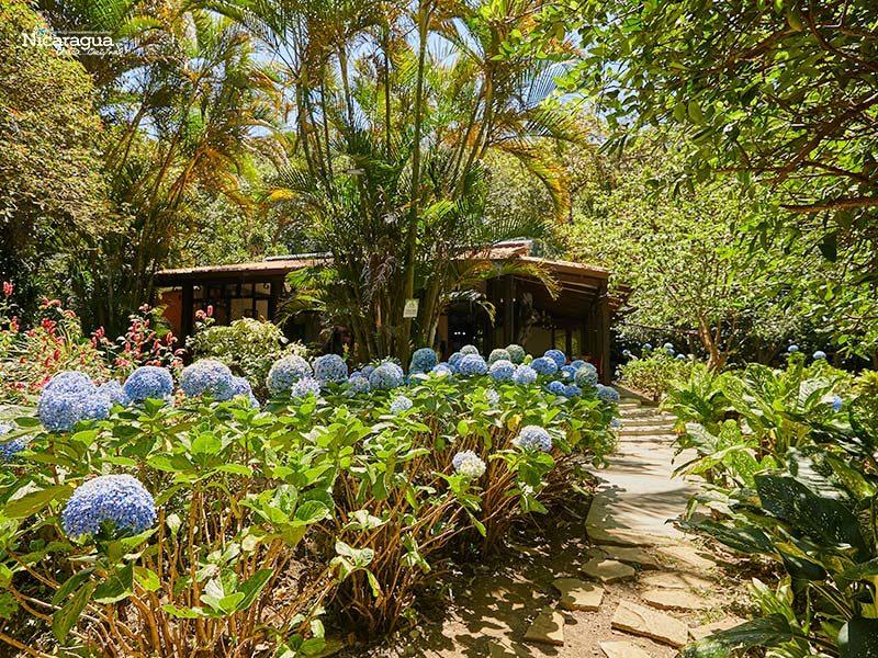 Hotel-Bosque-Las-Nubes,-El-Crucero,-Managua